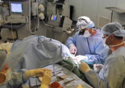 Комплексный командный подход в стоматологической реабилитации пациентов